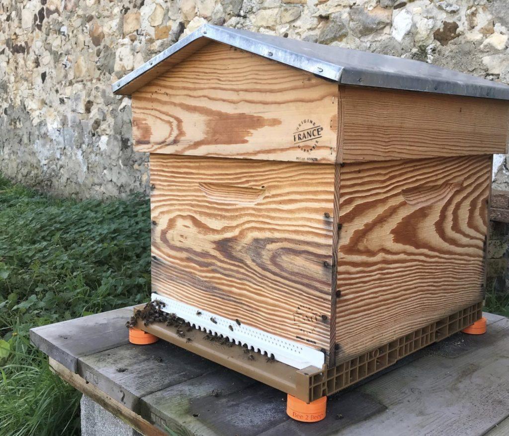 bee to beep ruche